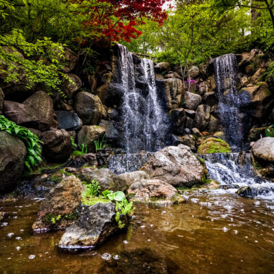 The Anderson Japanese Gardens in Rockford, Illinois.