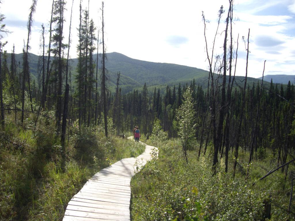 The Angel Rocks Trail in Alaska.