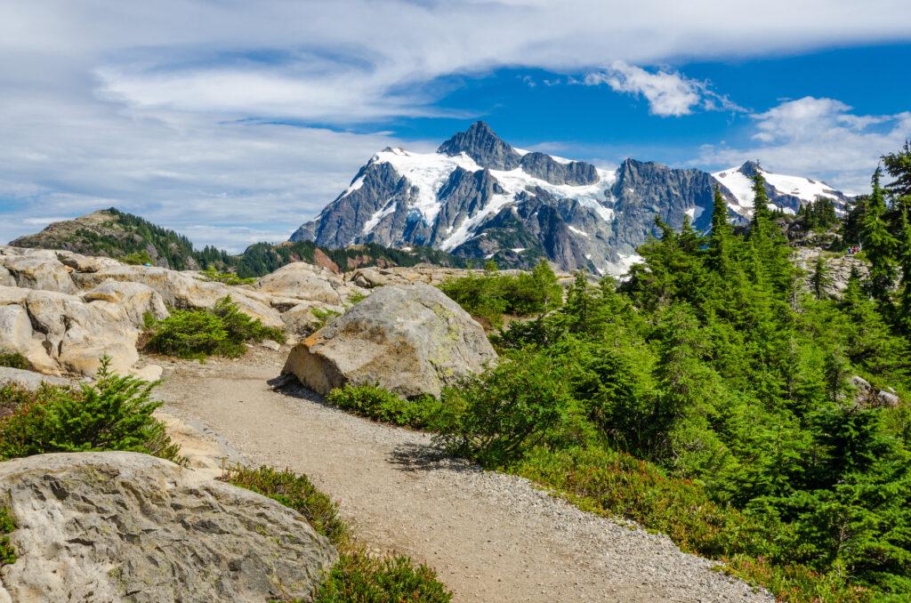 The Artist Ridge trail in Washington.