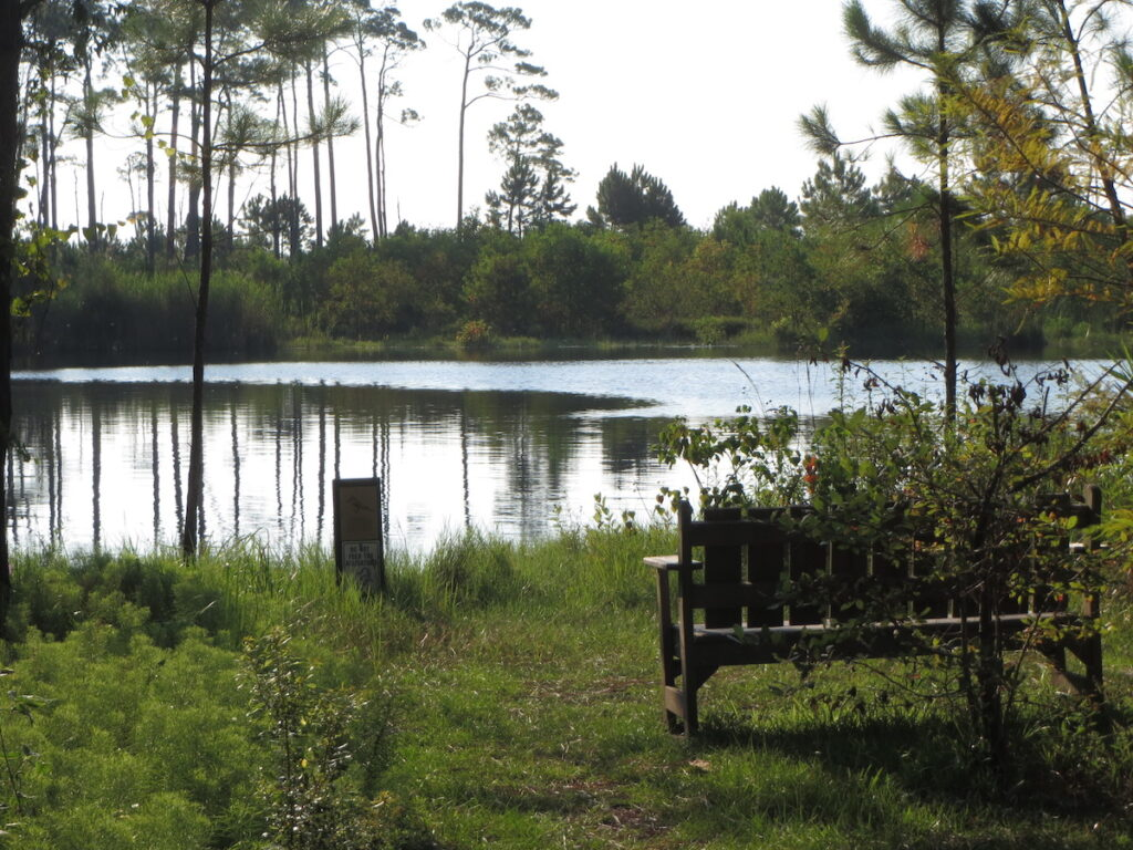 The Audubon Bird Sanctuary on Dauphin Island, Alabama.