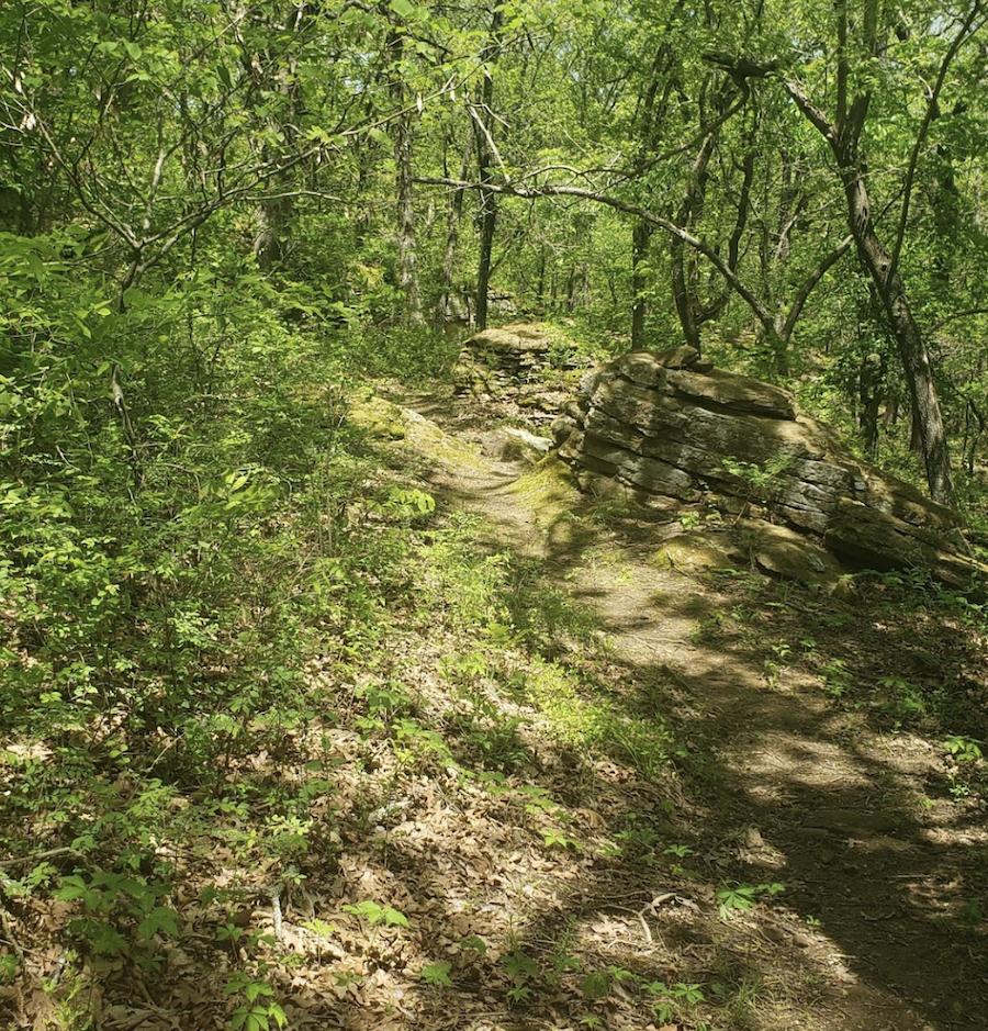 The Badger Creek Trail in Fall River, Kansas.