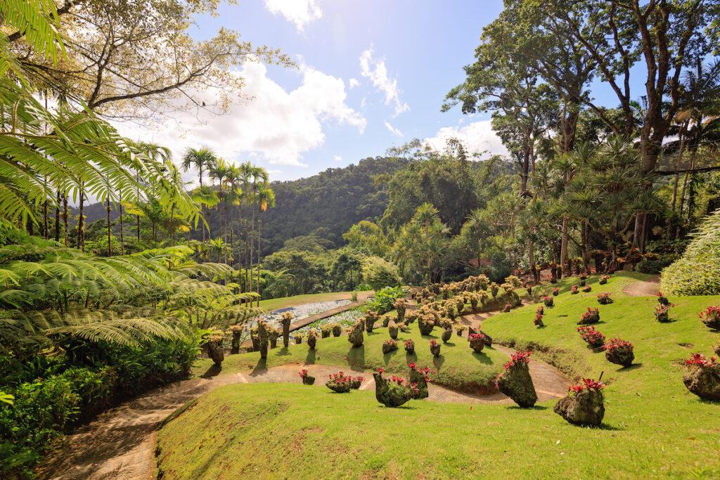 The Balata Botanical Garden on Martinique.