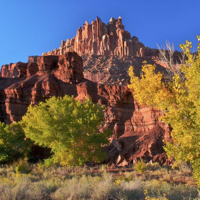 The beautiful landscape of Capitol Reef National Park.
