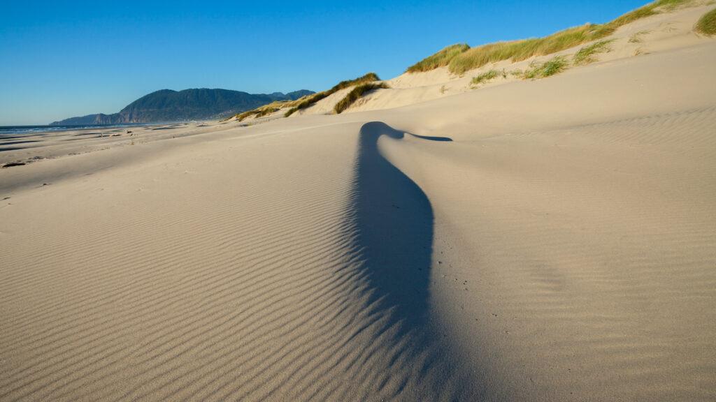 The beautiful Oregon Sand Dunes.