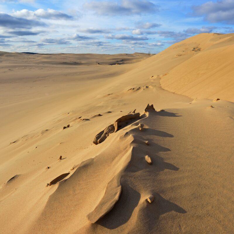 The beautiful Silver Lake Sand Dunes in Michigan.