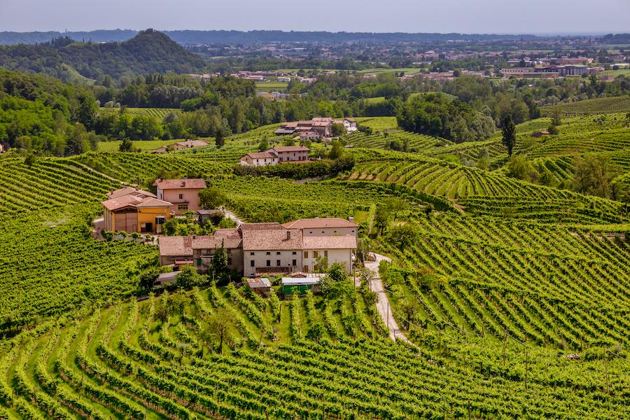 The beautiful wine region of Veneto, Italy.
