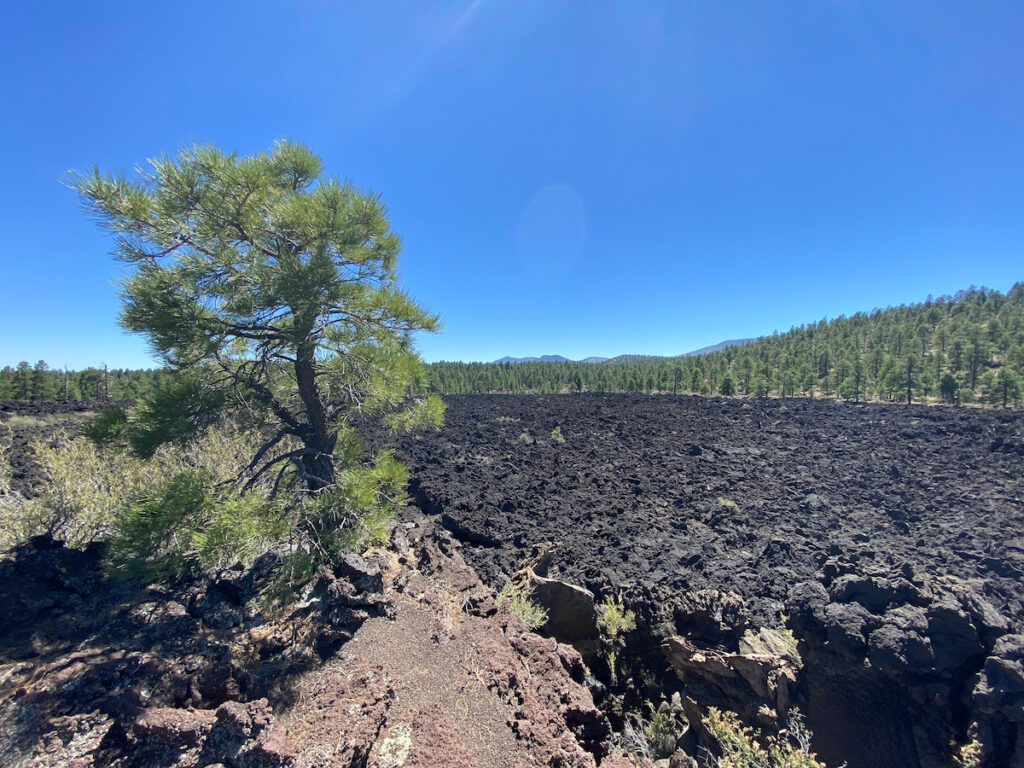 The Bonito Lava Flow near Sunset Crater.