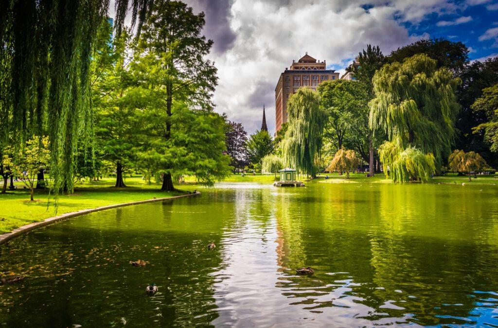 The Boston Public Garden.