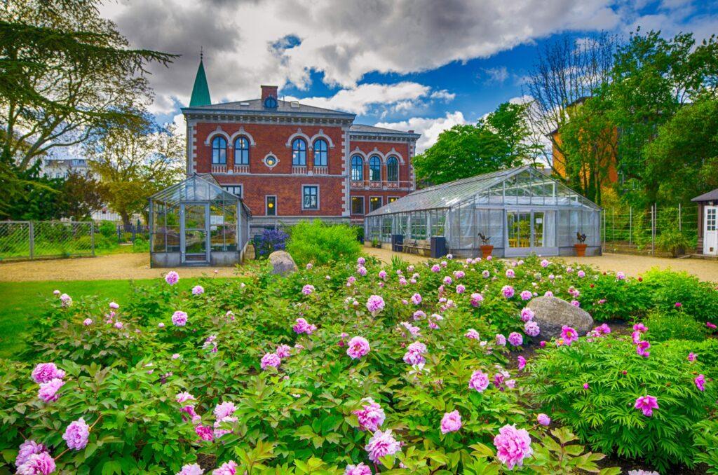 The Botanic Garden in Copenhagen.