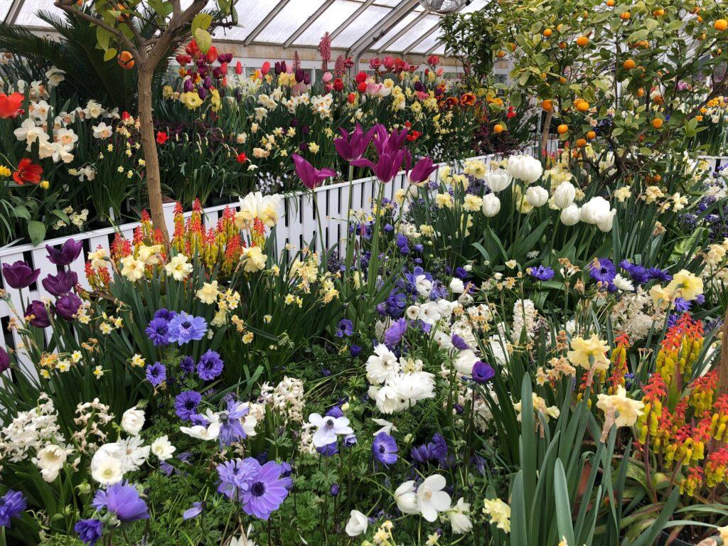 The Botanic Garden of Smith College in Northampton.