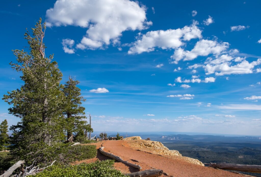 The Bristlecone Loop Trail at Bryce Canyon.