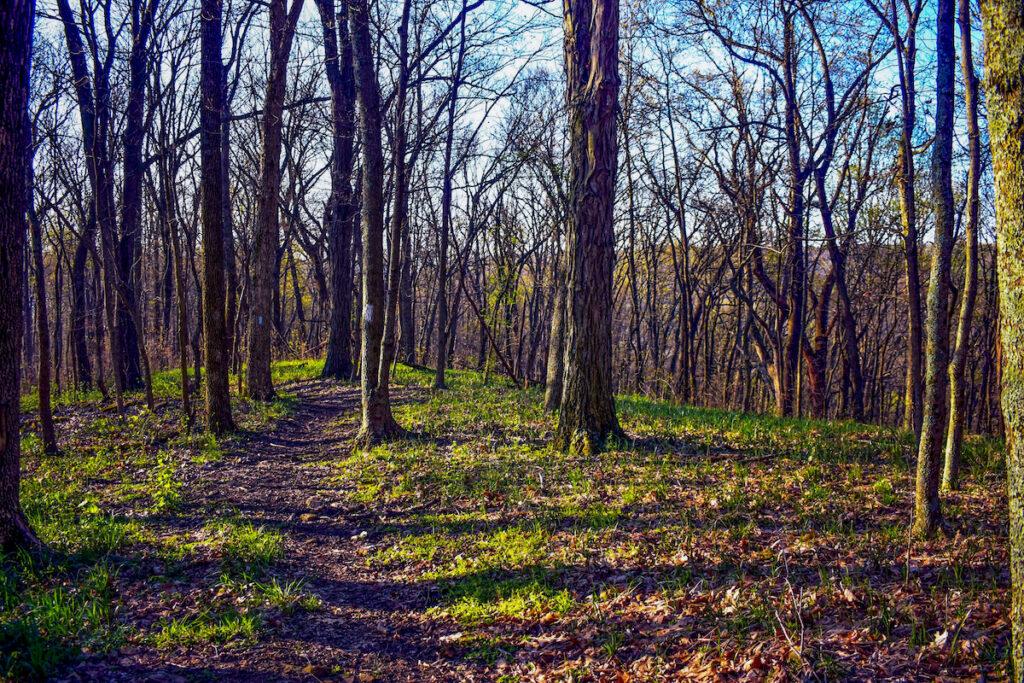 The Buckeye Trail through Ohio.