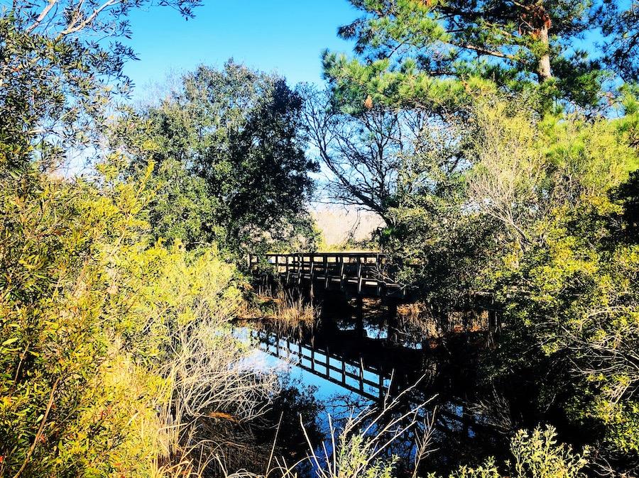 The Caw Caw Trail in Ravenel, South Carolina.