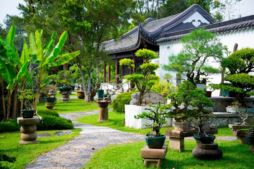 The Chinese Garden's Bonsai Garden.
