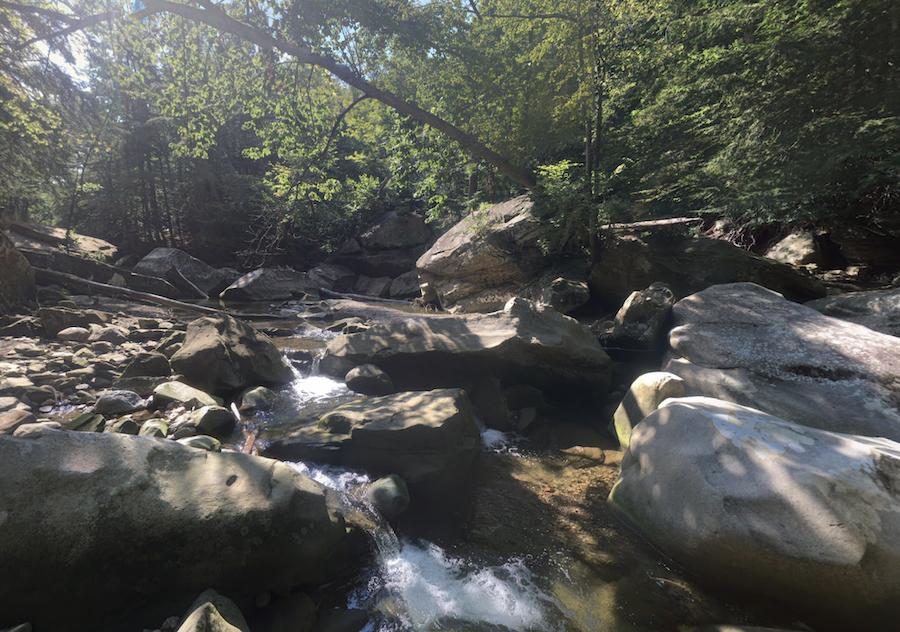 The Chippewa Creek Gorge in Brecksville, Ohio.