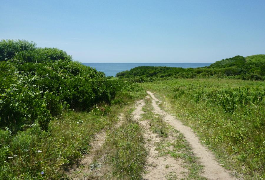 The Clay Head Trail on Block Island, Rhode Island.