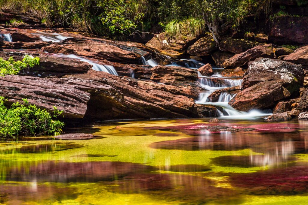 The colorful waters of Caño Cristales.