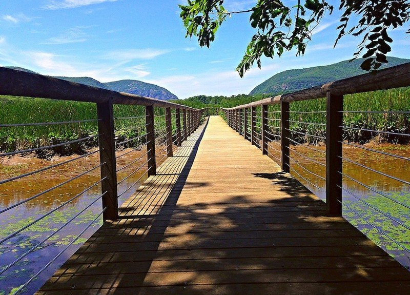 The Constitution Marsh Trail in New York.