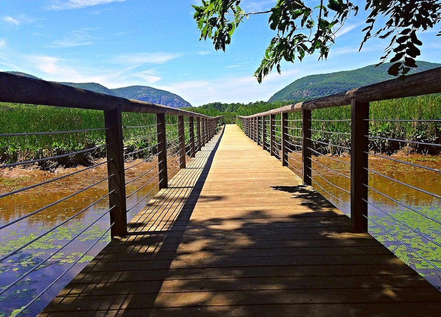 The Constitution Marsh Trail in Storm King State Park.