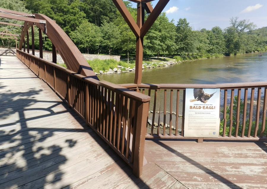 The Covered Bridge Trail in Trexler Nature Preserve.