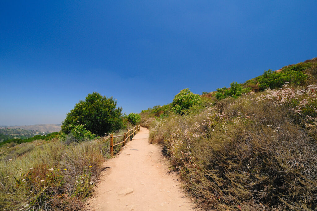 The Cowles Mountain trail at Mission Trails Regional Park in California.