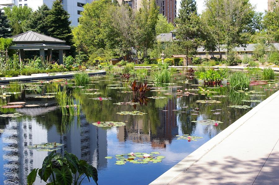The Denver Botanic Gardens in Colorado.