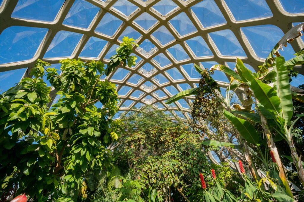 The Denver Botanic Gardens in Denver, Colorado