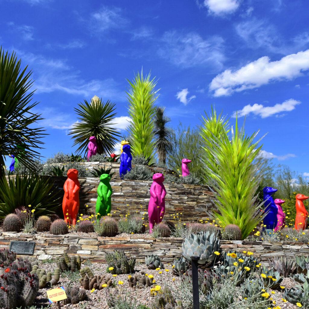 The Desert Botanical Garden entrance in Phoenix.