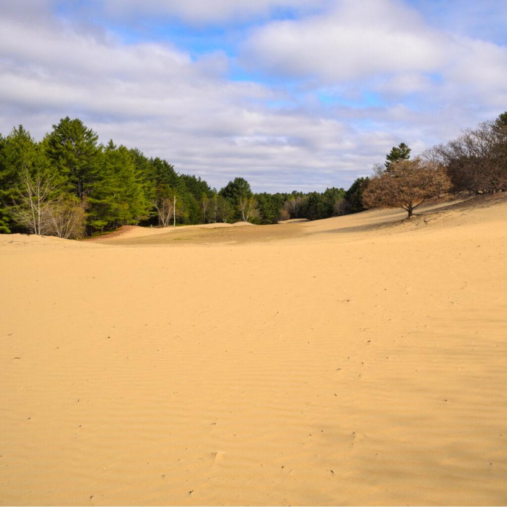 The Desert of Maine in Freeport.