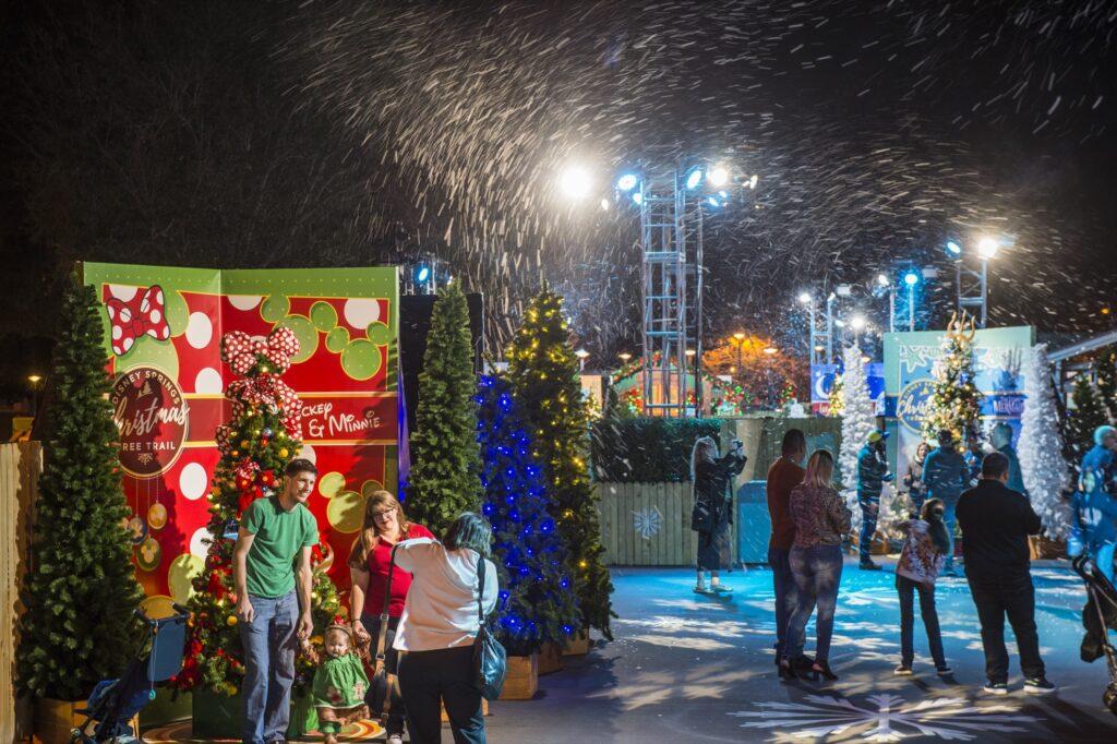 The Disney Springs' Christmas Tree Trail.