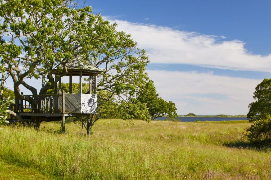 """The """"fairy treehouse"""" at Red Gate Farm."""
