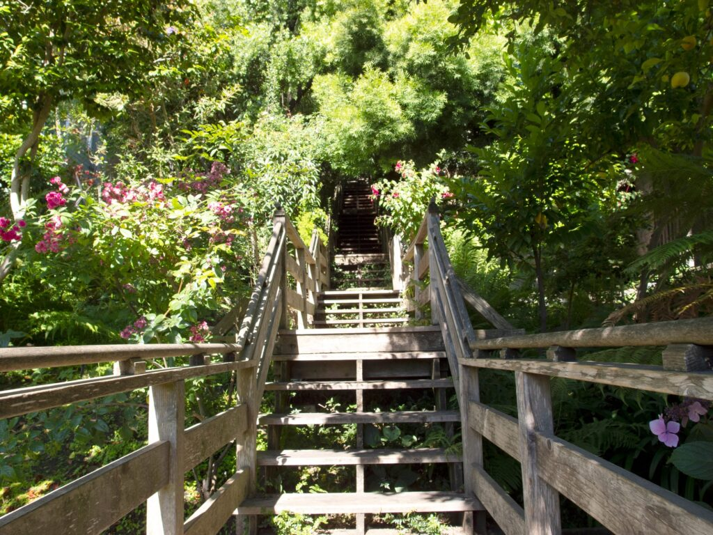 The Filbert Stairs leading up to Telegraph Hill.