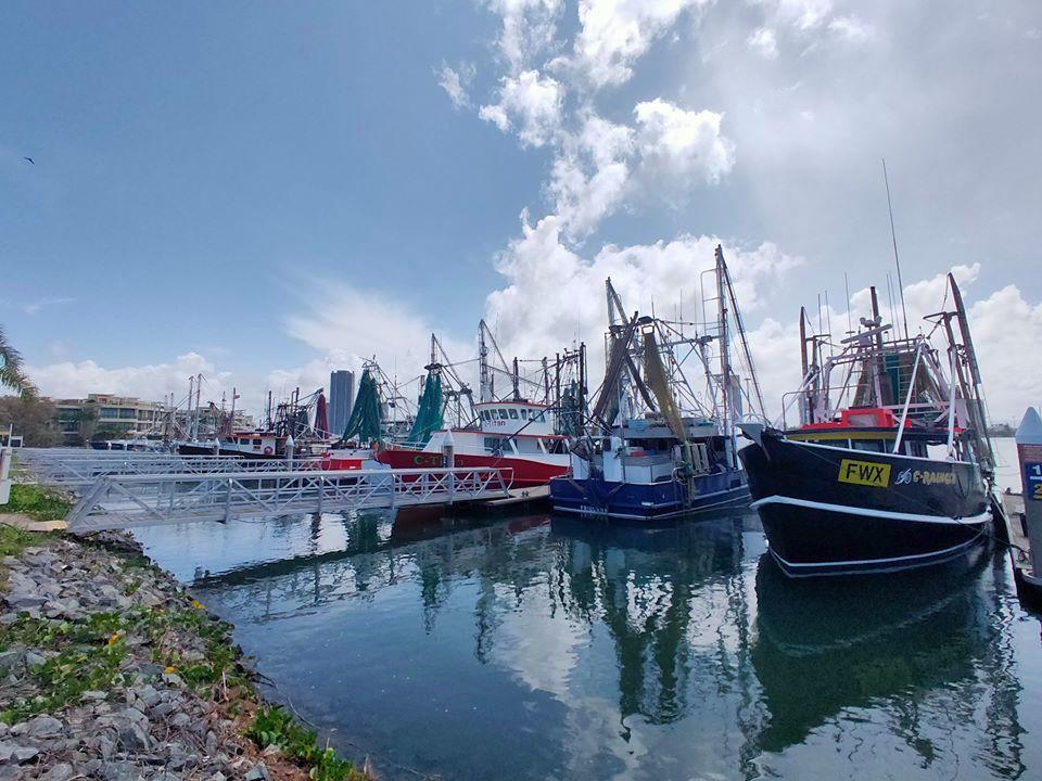 The Fishermen's Co-Operative market.
