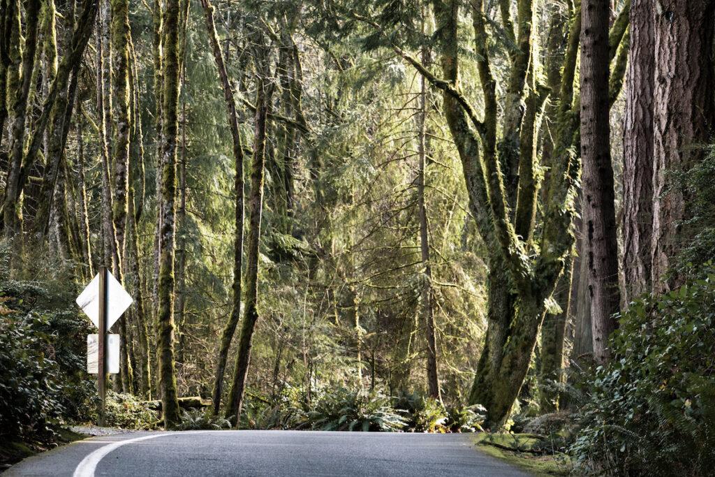 The Five Mile Drive in Tacoma, Washington.