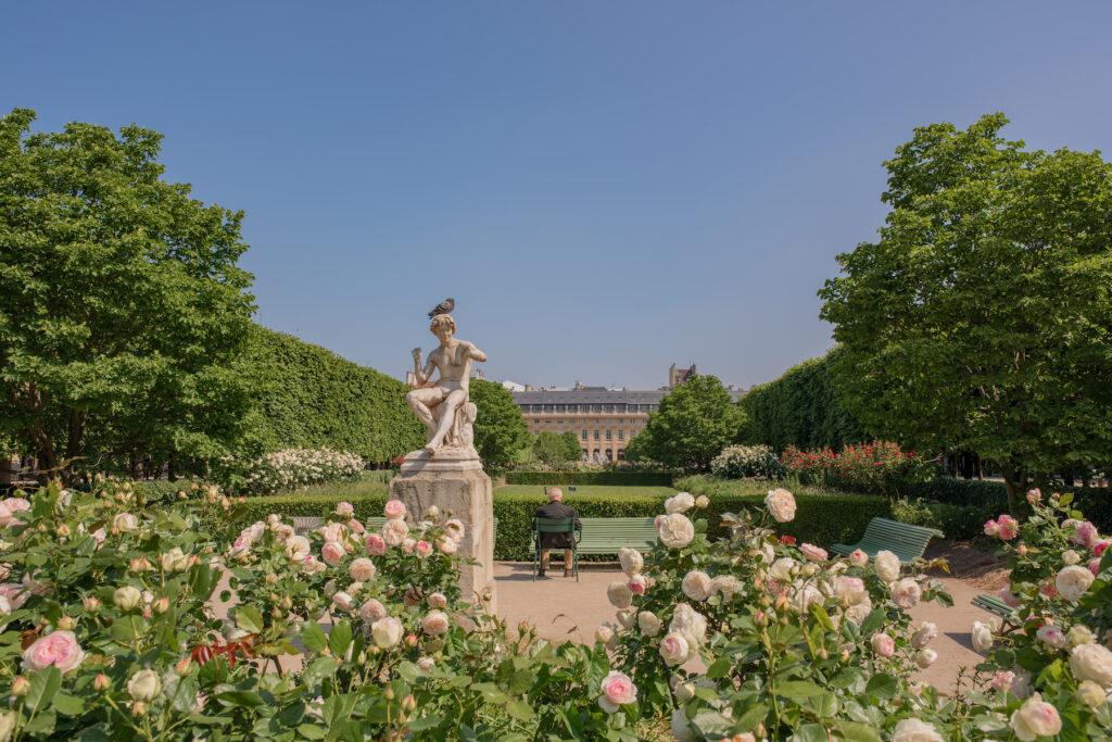 The gardens at the Palais Royal.