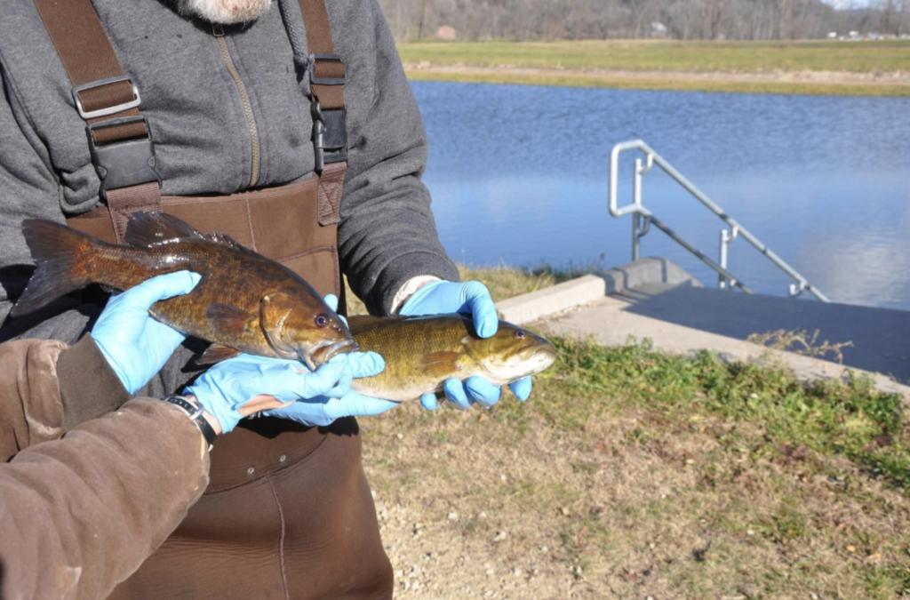 The Genoa Fish Hatchery in Wisconsin.