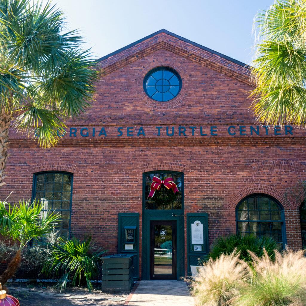 The Georgia Sea Turtle Center.
