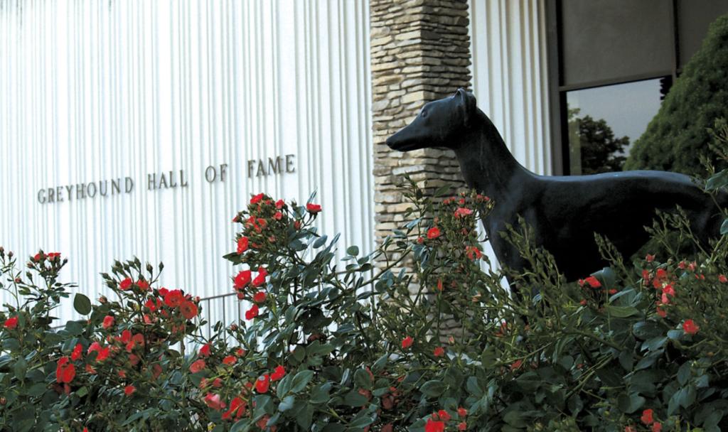 The Greyhound Hall Of Fame