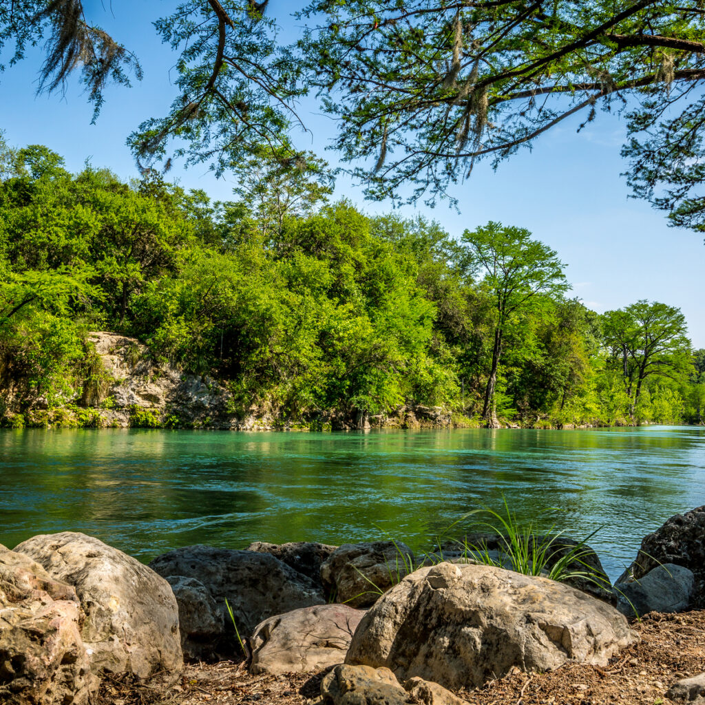 The Guadalupe River in New Braunfels, Texas.