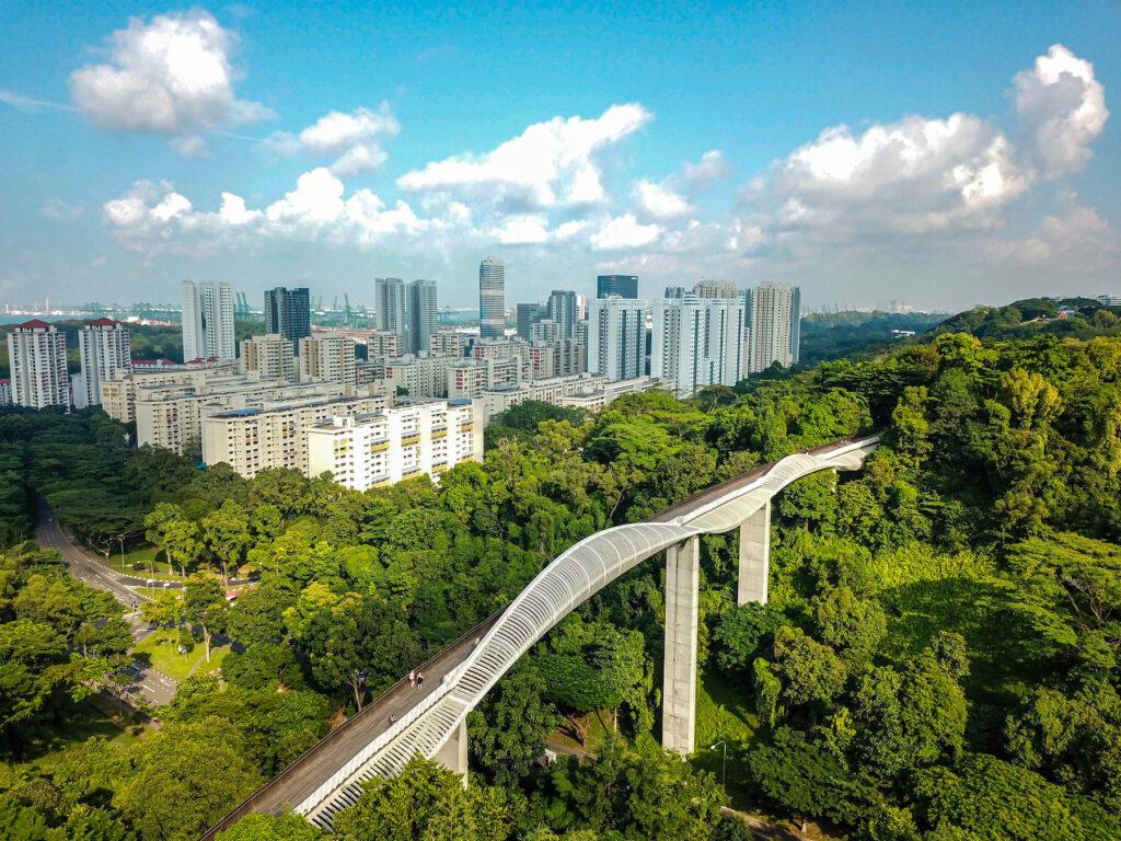 The Henderson Waves bridge in Singapore.