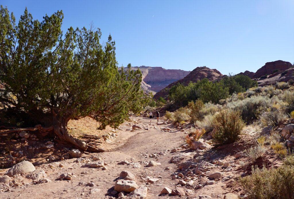 The hike to Buckskin Gulch the Coyote Wash.