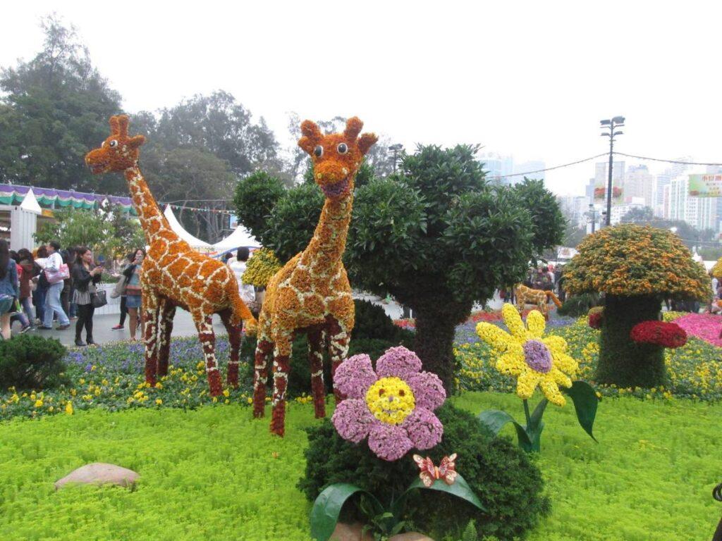 The Hong Kong Flower Show.