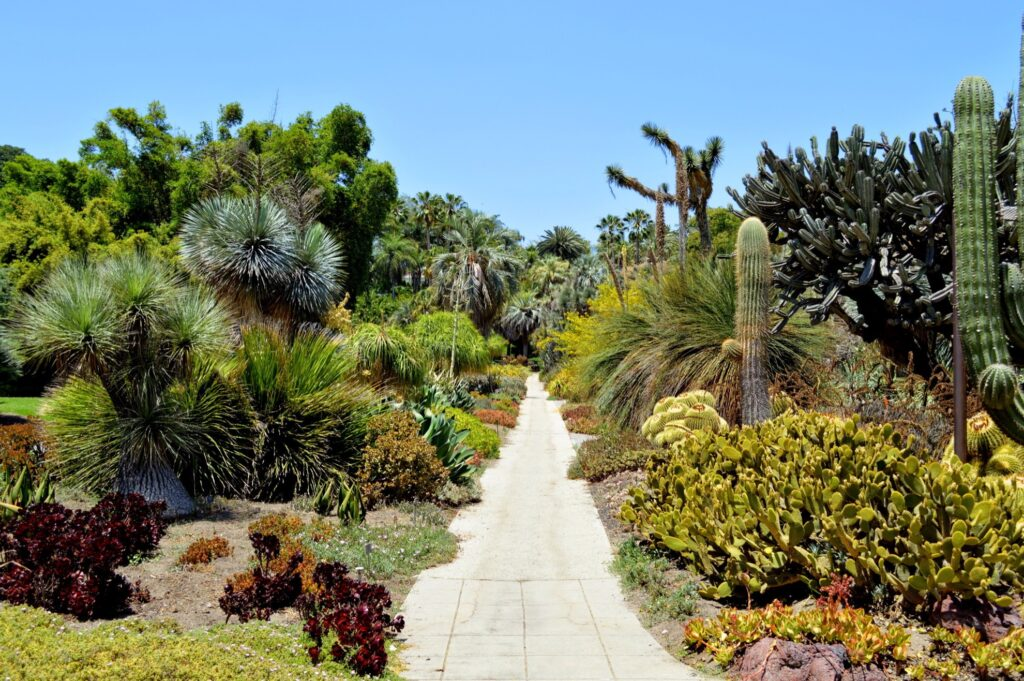 The Huntington gardens in San Marino, California