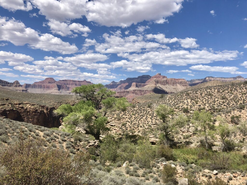 The Inner Canyon on the Tonto Trail.