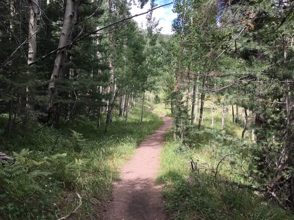 The Kachina Trail in Flagstaff, Arizona.