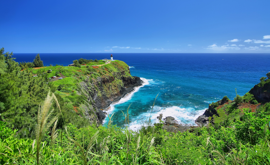 The Kilauea Point Wildlife Refuge on the island of Kauai.
