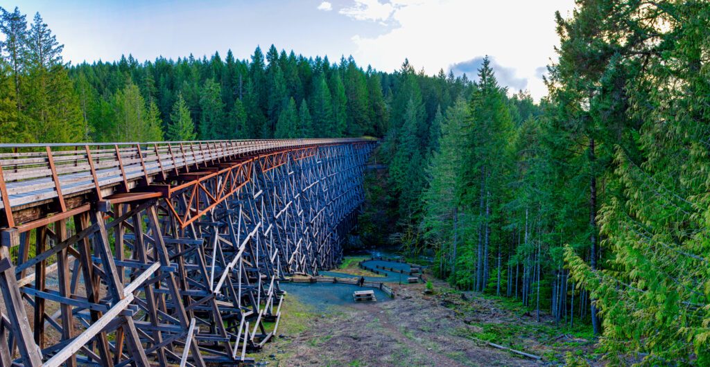 The Kinsol Trestle Bridge surrounded by evergreen trees