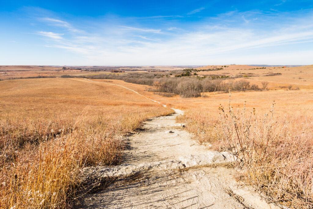 The Konza Prairie in Kansas.