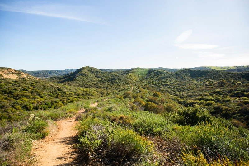 The Laurel Canyon Trail in southern California.
