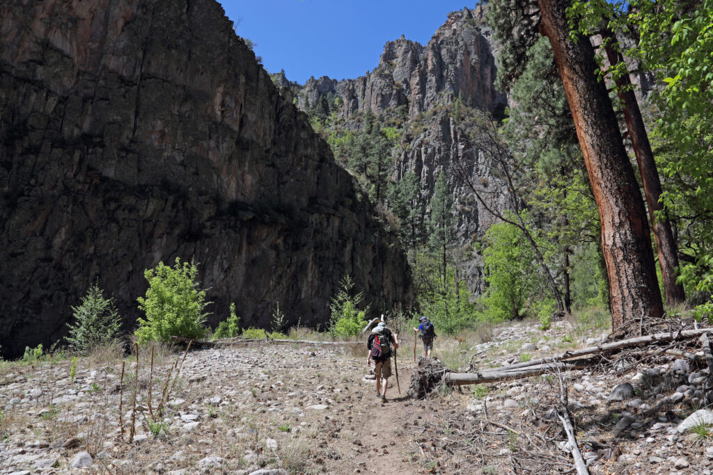 The Little Bear Canyon Trail in Gila National Forest.